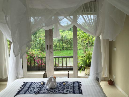 Surya Shanti Villa: Chambre traversante