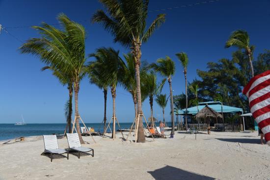Fiesta Key RV Resort & Marina: Camp view