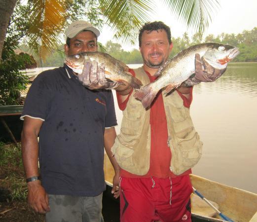 Villa Birdlake: One evening fishing result