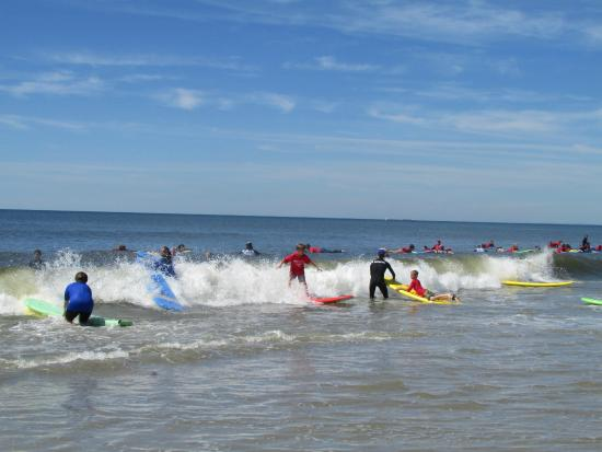 Far Rockaway, NY: Owned and operated by Pro Surfers Will & Cliff Skudin
