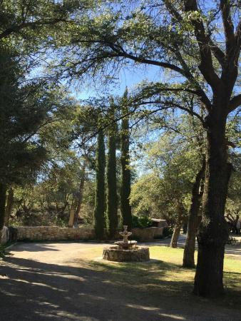 El Rancho Robles: Shady path