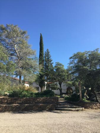El Rancho Robles: Stately trees provide shade on hot days