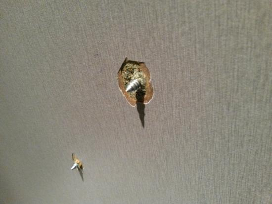 The Slug and Lettuce: Screws in the toilet wall. Be careful!