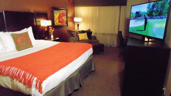 The Academy Hotel Colorado Springs: Mountain View King