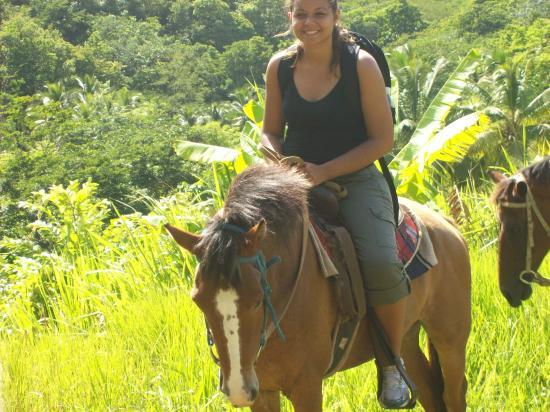 Rainforest Riding: Forest ride