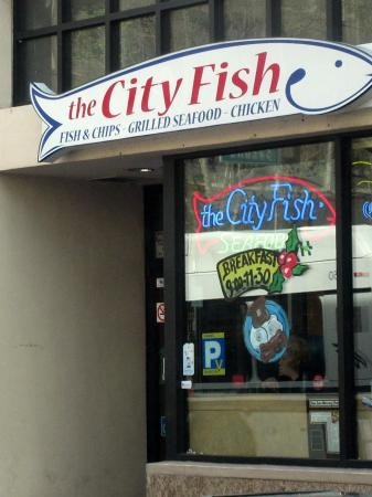 ‪The City Fish‬