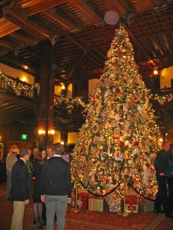 Hotel Del Coronado Christmas Tree 2021 Christmas Tree At The Hotel Del Picture Of Sheerwater Coronado Tripadvisor