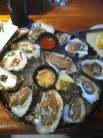 Oyster mania!