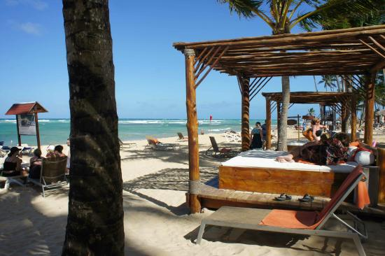 Preferred Club Beach Section Picture Of Dreams Punta Cana Resort