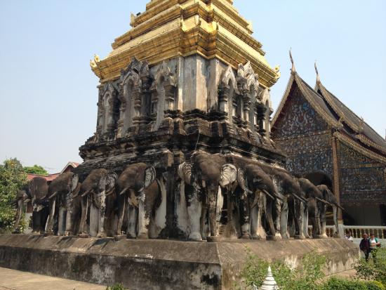 Wat Chiang Man: The Elephant Chedi