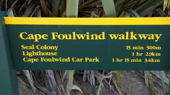 Cape Foulwind Seal Colony : route