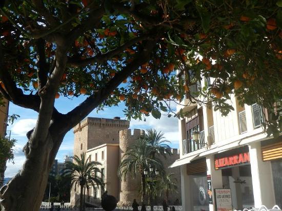 TRYP Ciudad de Elche: Im Stadtzentrum von Elche