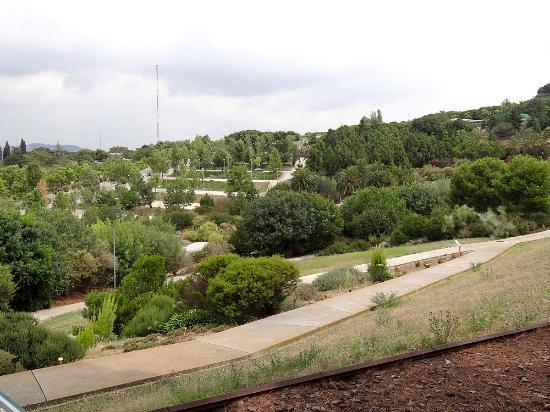 jardi botanic de barcelona picture of jardin botanico de