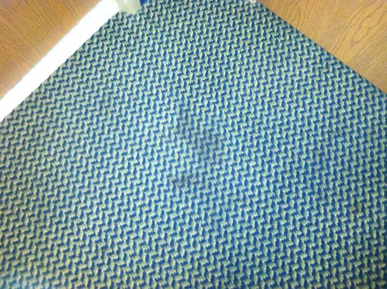 Sleep Inn & Suites Port Charlotte: pet stains on carpet in front of door