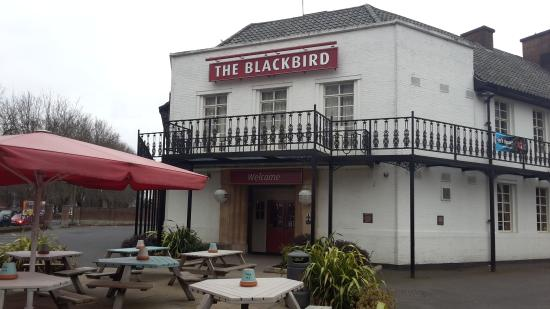 The Blackbird Sizzling Pub & Grill