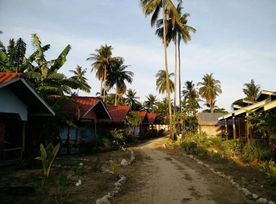 Isara Lanta Resort : Two rows of bungalows at Isara Lanta in the morning