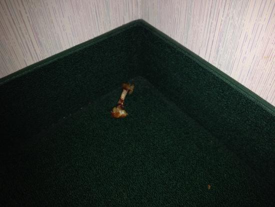 MainStay Suites Airport: One of many Eaten chicken wings next to elevator