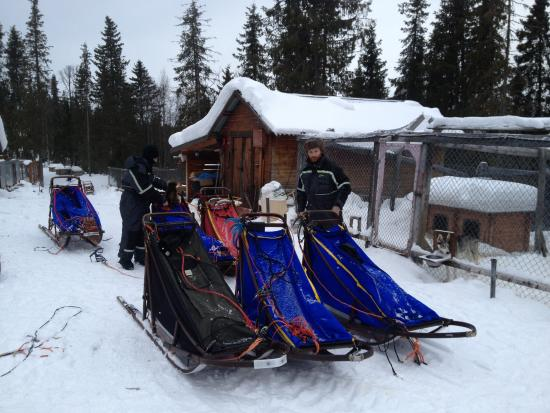 White Trail Adventures: Loading up the sleds