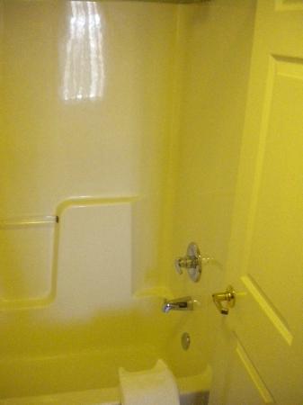 Staybridge Suites Chicago Oakbrook Terrace : Banheiro