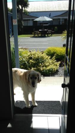 Gables Motor Lodge: Duke@Door