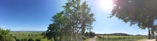 Villa Acquaviva: Giardino e Vigneti