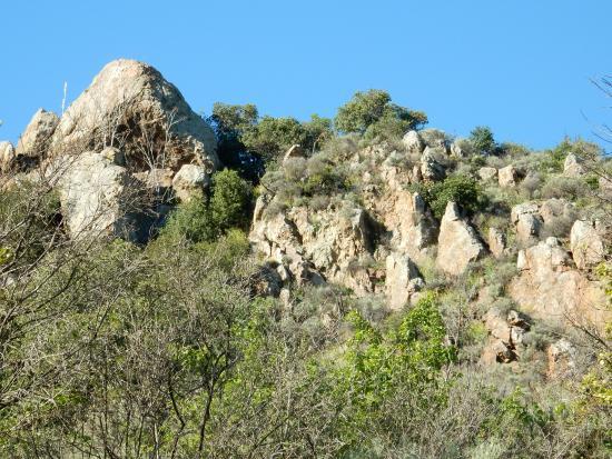 Alum Rock Park: Landscape