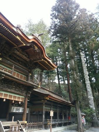 Suwa Taisha Shimosha Harumiya