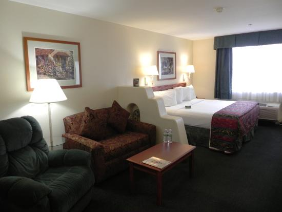 Garden Place Suites: King suite