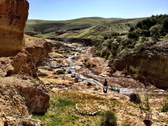La Pause Go For A Walk In The Wadi Amazing Experience