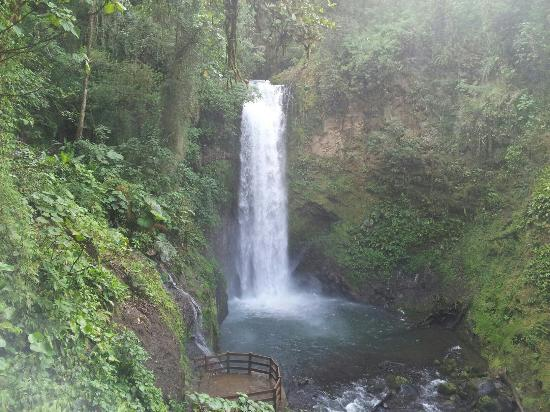 Ricky Ricardo Tours & Travels: waterfall  at la  paz  garden .