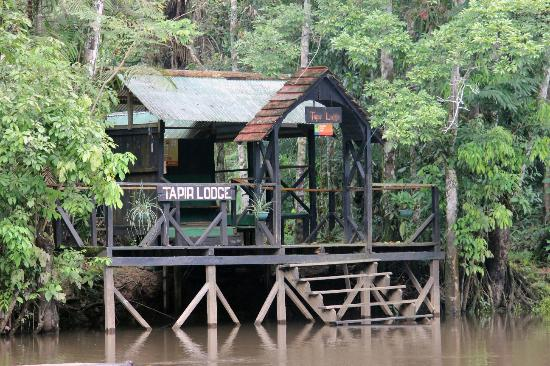 Tapir Lodge: Approaching the lodge by boat