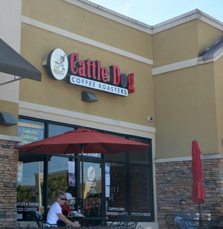 Cattle Dog Coffee Roasters: Good Local Coffee Roaster