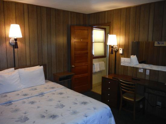 Village Inn Motel: Single Room