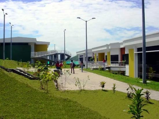 Universidad del Tolima