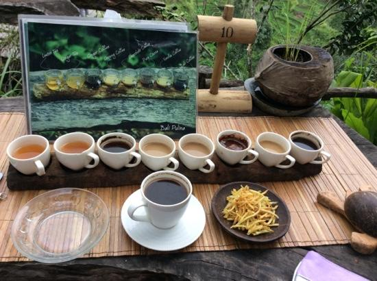 tea and coffee with a view - Picture of Bali Pulina Agro ...