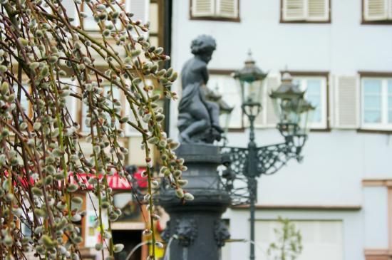 Restaurant Caveau Folie Marco: Fontaine au Printemps Place de l'Hôtel de ville.