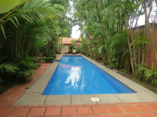 Villas Lirio: Pool