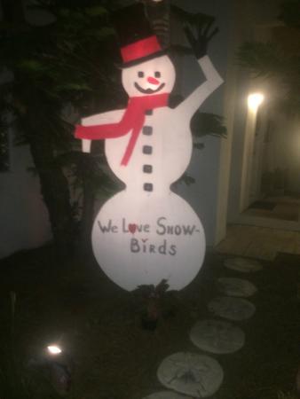 Cafe Coconut Cove: Snowman in a Coconut Cove?