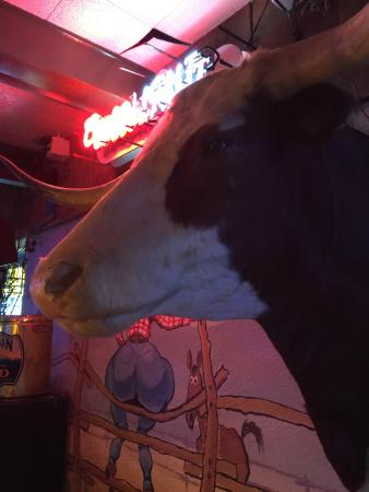 Green T Bar & Grill: Wall Decor, right over our head