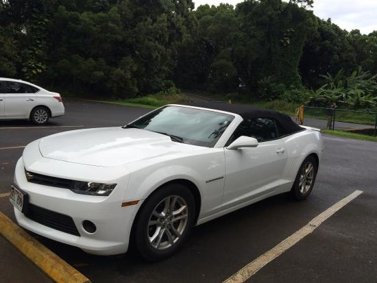 Our Hire Car For Journey White Camaro Convertible Hired