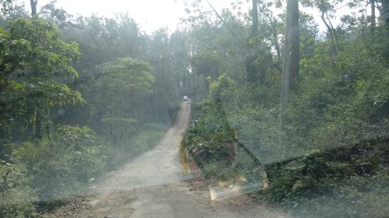 Grand Palace Hotel & Spa Yercaud: Road to the hotel