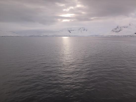Antarctic Peninsula: Dentro de la bahia