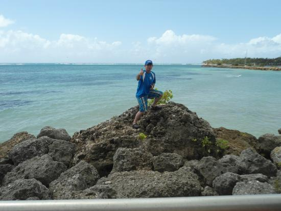 Île Grande-Terre, Guadeloupe: playas de Guadalupe