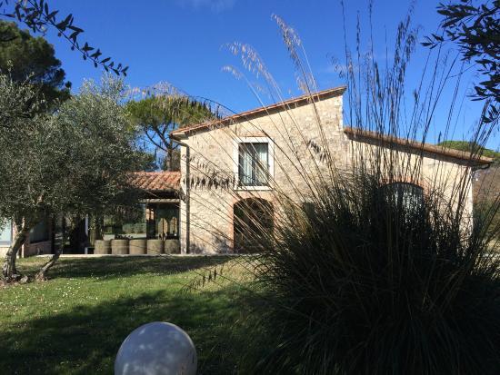 Villa Acquaviva: giardino e rustici