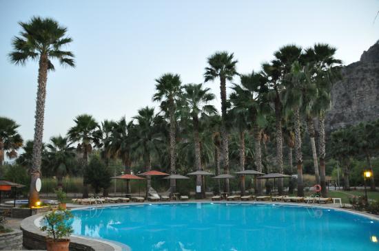 The Osmanli Hani: Palm Trees