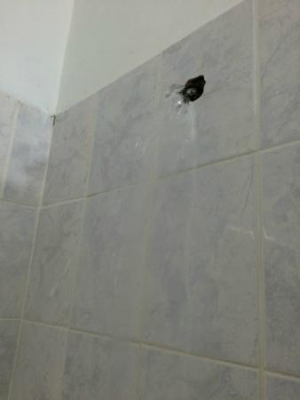 The Gardenia Resort : Shower less the shower head that rusted off completely