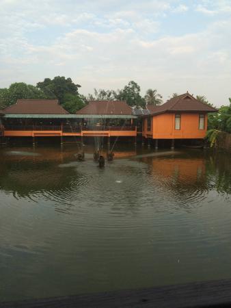 Pludhaya Resort and Spa: Vue de la chambre