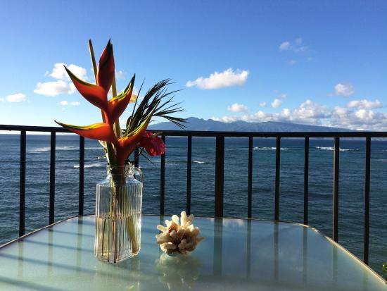 Kahana Reef : View of Molokai