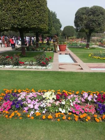 Mughal gardens picture of mughal garden new delhi Mughal garden booking