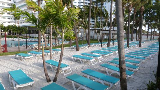 chambre picture of hotel riu plaza miami beach miami. Black Bedroom Furniture Sets. Home Design Ideas